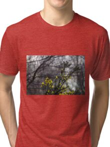 Common Gorse in the Woodland Tri-blend T-Shirt
