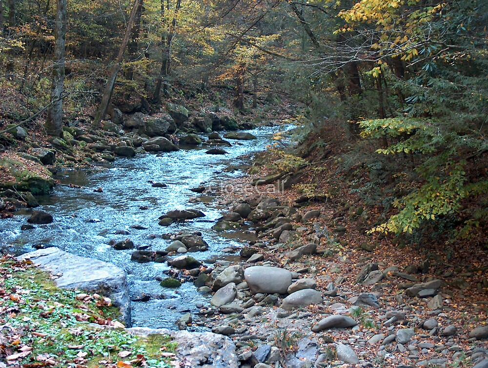 Little Pigeon River in Smoky Mountains by Danny Close