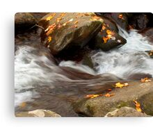 Mountain Stream in the Fall Canvas Print
