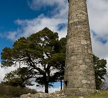 'Forgotten Tower' by Matt Thorne