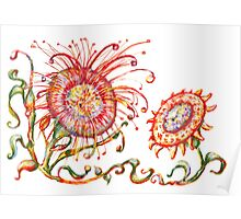 Pre columbian flowers Poster