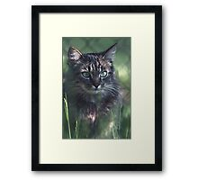 """Chat - Cat """" Tchink boom"""" 02 (c)(t) ) by Olao-Olavia / Okaio Créations 300mm f.2.8 canon eos 5 1989  Framed Print"""
