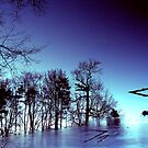 blue reflection by majo