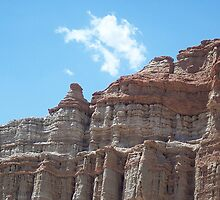 Desert Cloud by andreatreitman