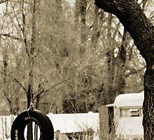 Goodyear Tire Swing  by Ryan Houston