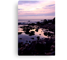 Sublime Canvas Print