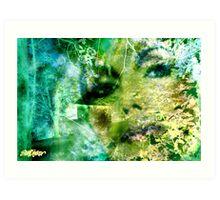 Deep Woods Wanderings Art Print