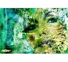 Deep Woods Wanderings Photographic Print