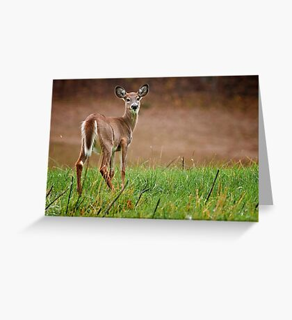 MMM - Grass Greeting Card