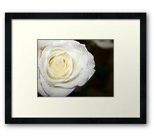 Pure Life Changes Framed Print