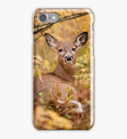 White Tail Deer Relaxing iPhone Case/Skin