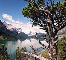 View Across Saint Mary Lake by David Lampkins