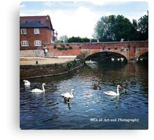 England - Swans Stratford Upon Avon Canvas Print