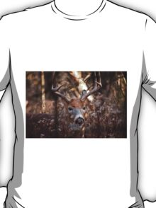 White Tailed Deer Buck In Woods T-Shirt
