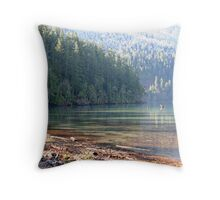 A Cold Spring Day Throw Pillow