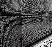Vietnam War Memorial by David Lampkins