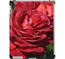 Wonderfully Red Roses iPad Case/Skin