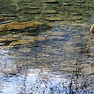 Rocks, Water and Reflections by Lynn Bawden