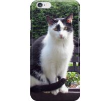 The Fence Sitter - Cat and Rose iPhone Case/Skin