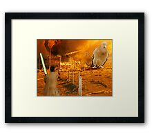 Khan Solo meets pigeOnclaw Framed Print