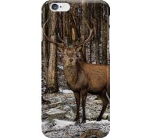 Forest Monarch iPhone Case/Skin