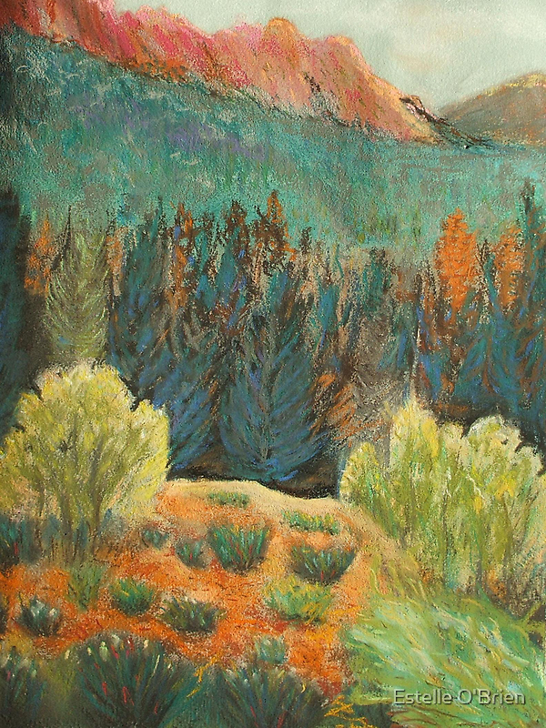 Spruce  Canyon by Estelle O'Brien