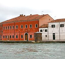 Water Taxi View of Venice by agtaylor