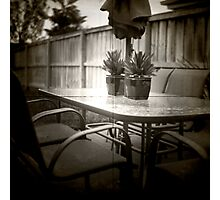 The back yard Photographic Print