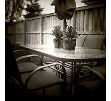 The back yard Photographic Print