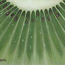 mini kiwi by cathy savels