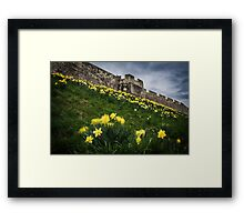Outside York's City Walls Framed Print