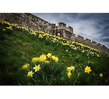Outside York's City Walls Photographic Print