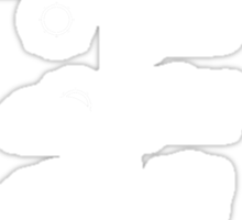 Sunny 16 Rule - White Sticker
