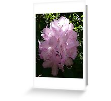 Natures Bridal Bouquet Greeting Card