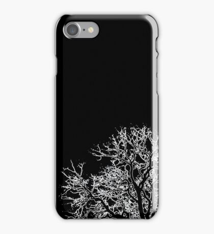 Diverging Tree Branches iPhone Case/Skin