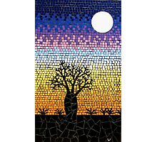 Baoab Tree Photographic Print
