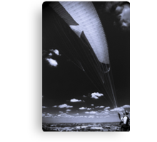 High flying Canvas Print