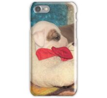 Not A Puppy Was Stirring ~ iPhone Case/Skin