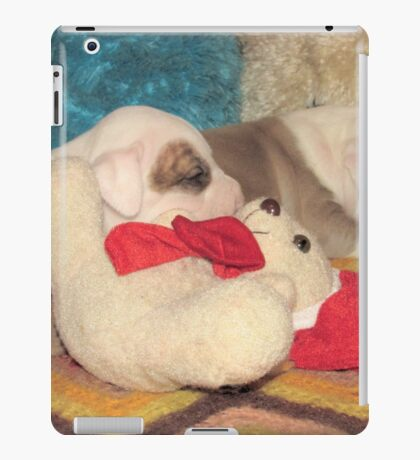 Not A Puppy Was Stirring ~ iPad Case/Skin