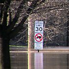 Streets Flooded by Sade