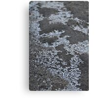ice crystals on sand Canvas Print