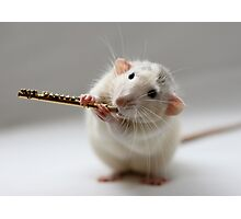 The flute Photographic Print