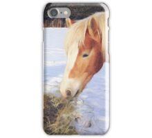 Donkey and Haflinger iPhone Case/Skin