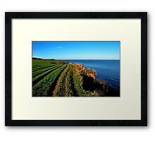 Walking on the November cliff Framed Print