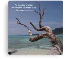 Sea Secrets Canvas Print
