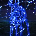 Reindeer Blue by Penny Smith