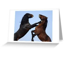 Stallion Joust Greeting Card