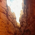 Southern UTAH 001 by Dylan & Sarah Mazziotti