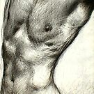 Male Torso by Garth Horsfield