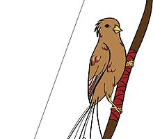 Archery Bird by parrotproducts
